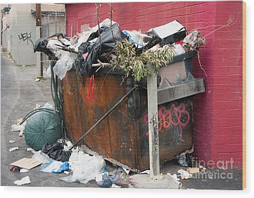 Wood Print featuring the photograph Trash Dumpster In Slums by Gunter Nezhoda