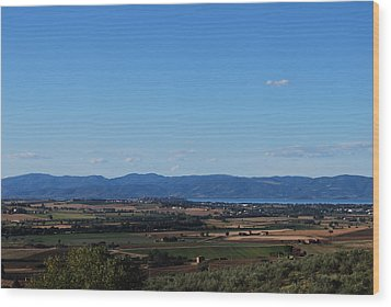 Trasimeno Viewpoint Wood Print by Dorothy Berry-Lound