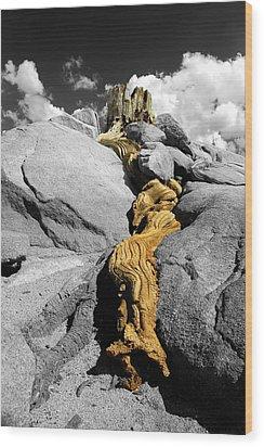 Traveling Through Time Wood Print