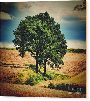 Tree Alone Wood Print by Boon Mee