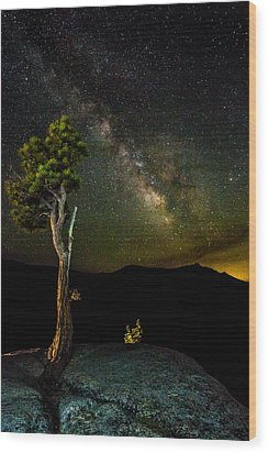 Tree Amongst The Stars Wood Print by Mike Lee