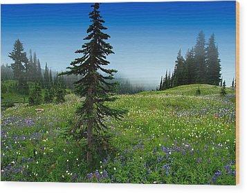 Tree Amongst Wildflowers Wood Print