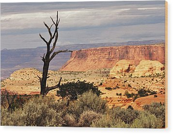 Tree And Mesa Wood Print by Marty Koch