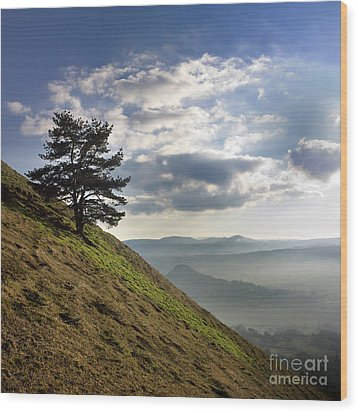 Tree And Misty Landscape Wood Print by Bernard Jaubert