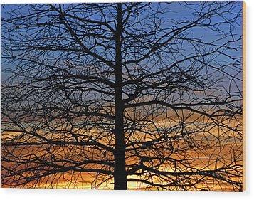 Tree At Sunset Wood Print by Daniel Woodrum