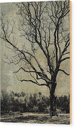 Tree Before Spring Wood Print