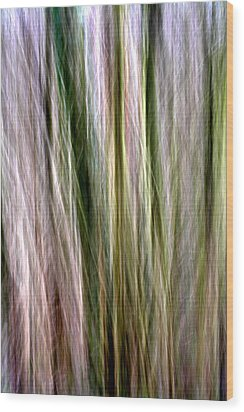 Tree Boughs Abstract II Wood Print by Natalie Kinnear
