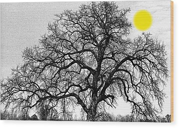 Wood Print featuring the photograph Tree By Moon Light by Wanda Brandon