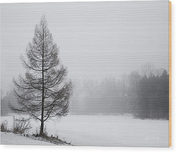 Tree By The Snowy Lake Wood Print