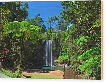Tree Fern And Waterfall In Tropical Rain Forest Paradise Wood Print