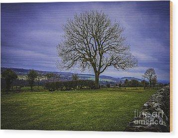 Tree - Hadrian's Wall Wood Print by Mary Carol Story