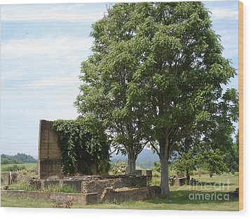 Wood Print featuring the photograph Tree House by Jane Ford