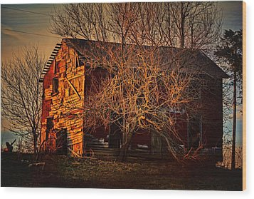 Tree House Wood Print by Robert McCubbin