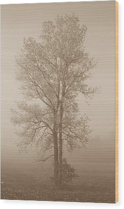Tree In Morning Fog Wood Print by Eje Gustafsson