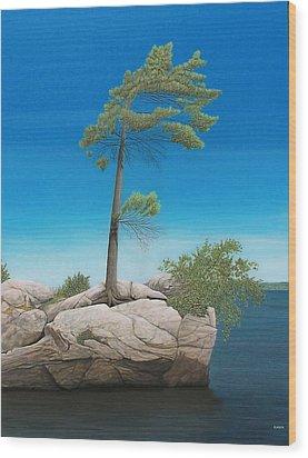 Tree In Rock Wood Print by Kenneth M  Kirsch