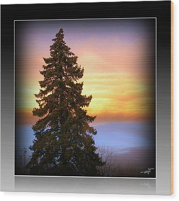 Wood Print featuring the photograph Tree In Sunrise by Michelle Frizzell-Thompson