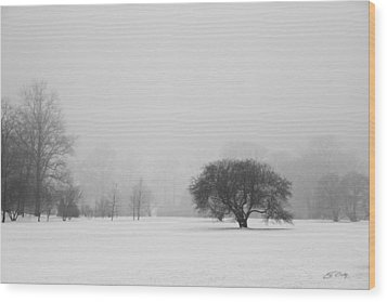 Wood Print featuring the photograph Tree In The Fog by Ed Cilley