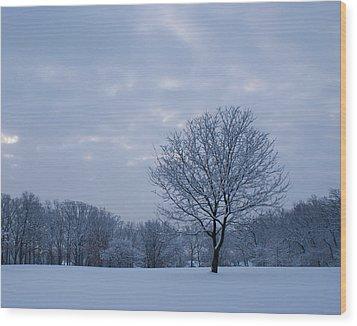 Tree In Winter Wood Print by Larry Bohlin
