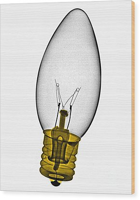 Tree Light Bulb X-ray Wood Print by Bert Myers