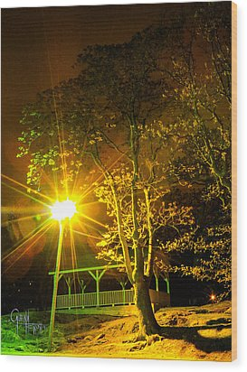 Tree Lights Wood Print by Glenn Feron