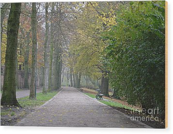 Wood Print featuring the photograph Tree Lined Path In Fall Season Bruges Belgium by Imran Ahmed