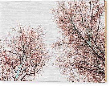 Tree Wood Print by Nina Peterka