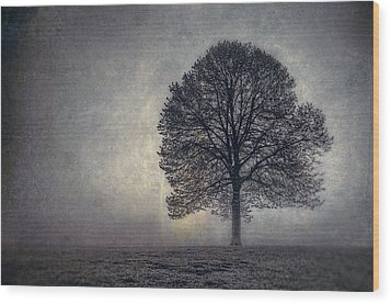 Tree Of Life Wood Print by Scott Norris