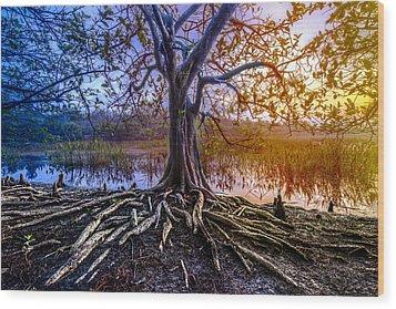Tree Of Souls Wood Print by Debra and Dave Vanderlaan