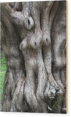 Tree Of Souls Wood Print