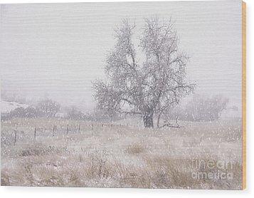 Tree Of Storm Wood Print