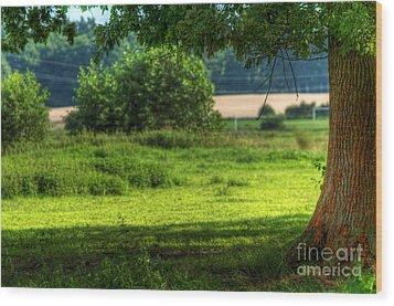 Tree On Summer Field Wood Print by Michal Bednarek