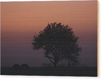 Tree Wood Print by Paula Brown