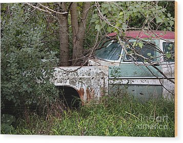 Tree-powered Desoto Wood Print by Rebecca Davis