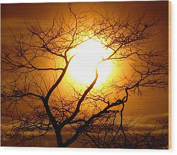 Tree Set Wood Print
