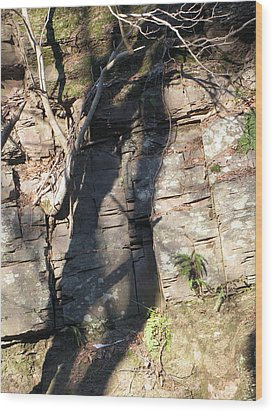 Tree Shadows Wood Print