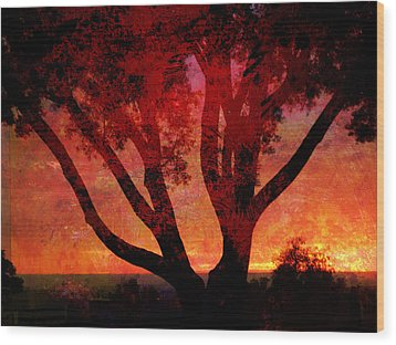 Tree Silhouette In Sunset Abstraction Wood Print by John Fish