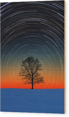Wood Print featuring the photograph Tree Silhouette With Star Trails by Larry Landolfi
