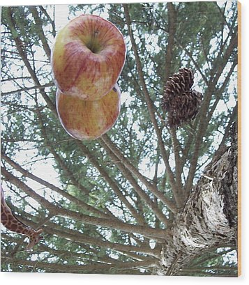 Tree Spiral Wood Print