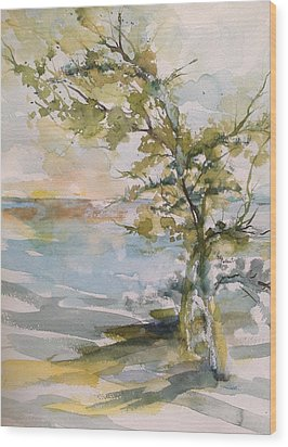 Tree Study Wood Print by Robin Miller-Bookhout
