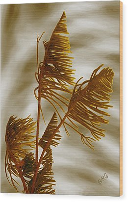 Tree Top Wood Print by Ben and Raisa Gertsberg
