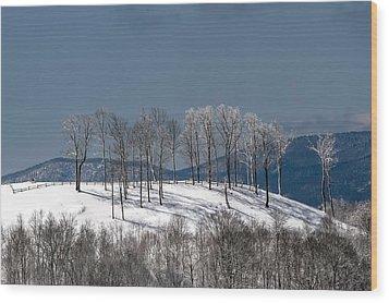 Tree Topper Hill Wood Print by John Haldane