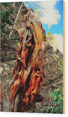 Tree Trunk Wood Print by Kathleen Struckle