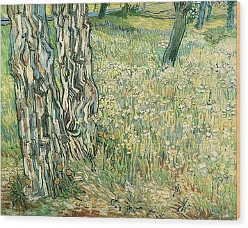 Tree Trunks In Grass Wood Print by Vincent van Gogh