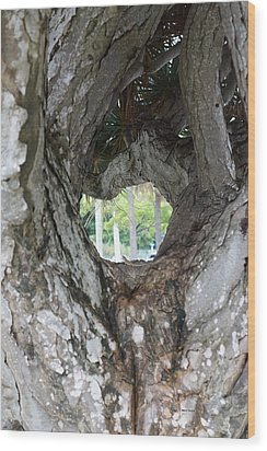 Wood Print featuring the photograph Tree View by Rafael Salazar