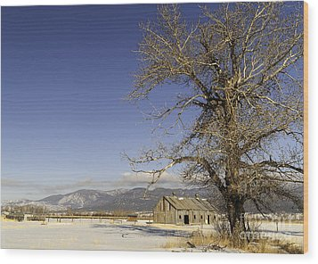 Wood Print featuring the photograph Tree With Barn by Sue Smith