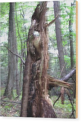 Tree With Faces Wood Print by Melissa Stoudt