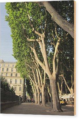 Treed Avenue Wood Print by Pema Hou