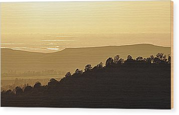 Wood Print featuring the photograph Treeline by AJ  Schibig