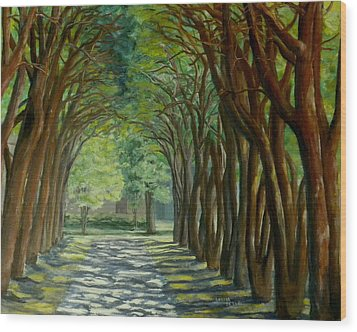 Wood Print featuring the painting Treelined Walkway At Lsu In Shreveport Louisiana by Lenora  De Lude