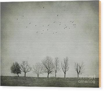 Trees And Birds Wood Print by Diana Kraleva
